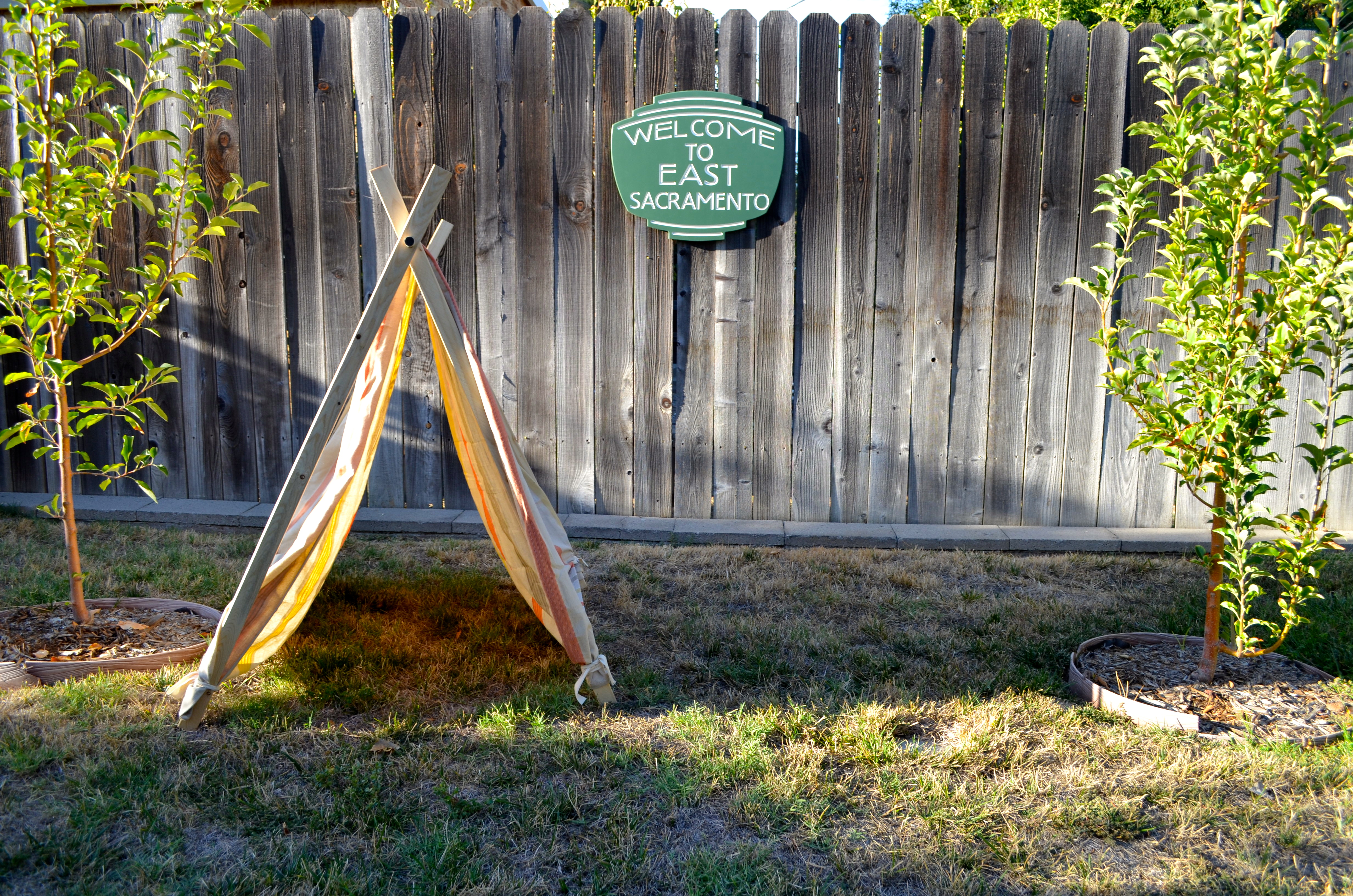 DSC_2834 & DIY A-frame tent | East Sac Edible