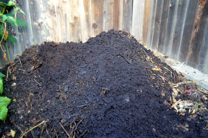 The new open air compost pile. It looks so nice because there is an obscene amount of coffee grounds thrown on top!